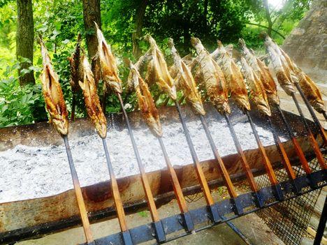 Nyárson sütés az Aranykárász Campingben, Rajka 2014. július 11.-én