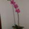 CYMERA_20140210_104007