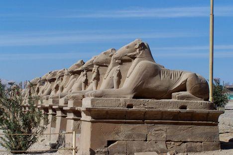Egyiptom, 2007 karácsonya 378