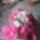 Harisnya_viragok_1_7_1805757_2699_t