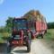 traktor hamszteral