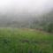 Pusztafalu köd