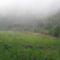 Pusztafalu ködös táj