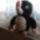 Amigurumi_059_1867415_9095_t