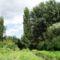 Igrice-csatora a mocsár Kiss-Papp tó felé...