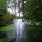 Igrice-mocsár Kiss-Papp tó