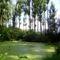 Igrice-mocsár Kiss-Papp tó (4)