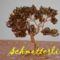 Bonsai barna színekben