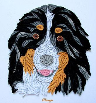 Berni pásztor kutya