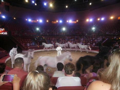 Cirkusz classius előadását láttuk. 16