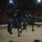 Cirkusz classius előadását láttuk. 17