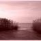 Téli Balaton. 20