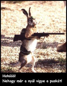 vicces 1 a nyúl viszi a puskát