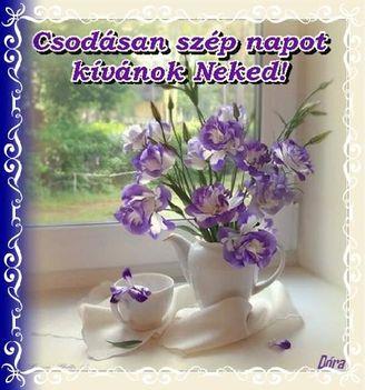 Csodásan szép napot kívánok neked!