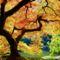 Őszi színek-0152