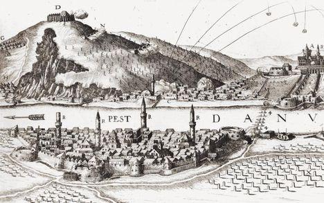 Pest 1684