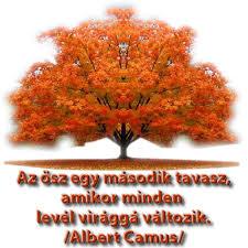 őszi képek 5