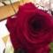 Születésnapi rózsám.
