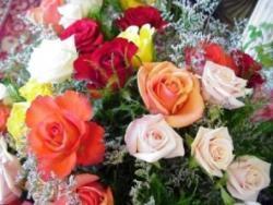 Rózsák a Szűzanyának