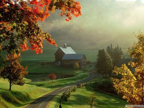 Mentovics Éva: Az ajándékosztó ősz