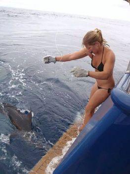 Tengeri horgászat-10408