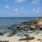 sri_lanka_trinco_pigeon_island