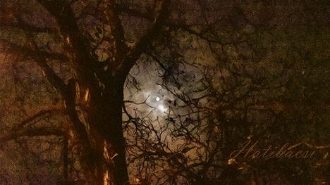 20141006_22_34-Kettösfény-az-éjszakában