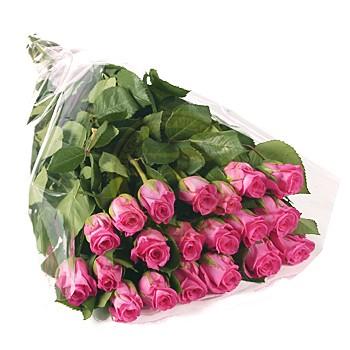 Sok szép rózsa