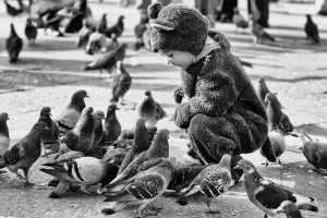 Aranyosi Ervin:Isten galambjai