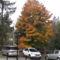 Mátra őszi táj