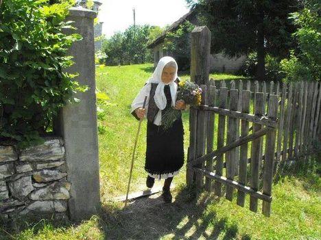 Róna Katalin:Öreg szívem, mint vén hegedű húrja,