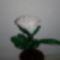 IMG_20141019_205554