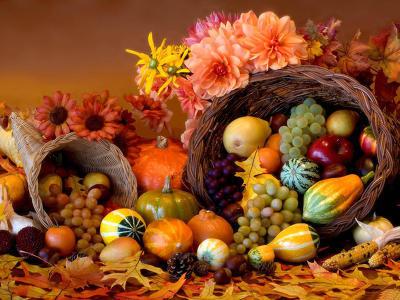 M.J.Kat:  Szép őszi vers