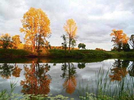 Szép őszi napokat kívánok!