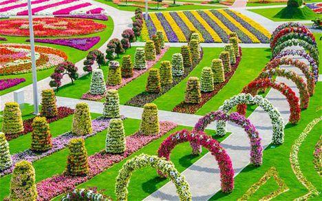 Dubai miraben garden