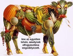 Mákos Ákos fogyókúrás étrend javaslata
