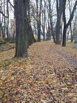 Kőszeg Széchenyi tér