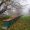 Szelkó-tó   parti sétány méhes