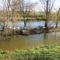 Lajta folyó Zurdorf belterülete melletti szakaszon, 2014. november 20.-án