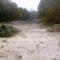 Őszi kisvíz a Kisbodaki ágvéglezárásnál, 2014. október 29.-én