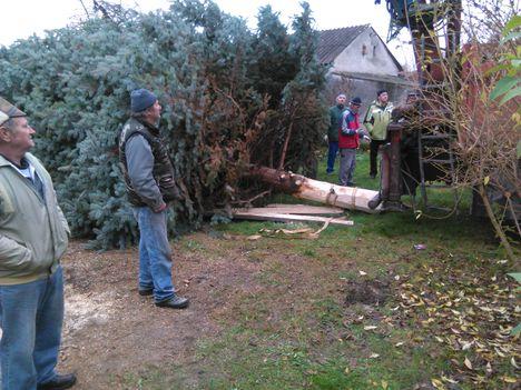 Karácsonyfa állitás 005