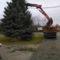 Karácsonyfa állitás 010