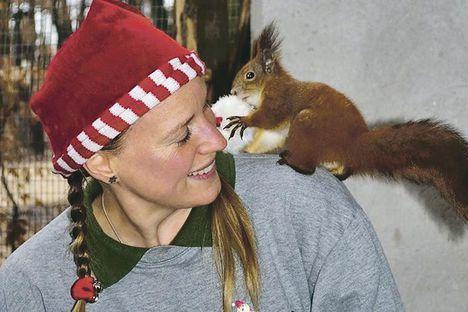Bojtra támad a mókus