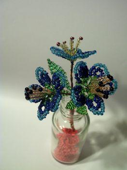 pici kék virág