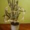 virágaim_34
