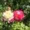 Virágok 88