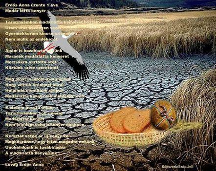 Madárlátta kenyér....Dáma Lovag Erdős Anna