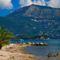 beach-daphnila