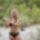 Legyezes_bikiniben025_1910829_1554_t