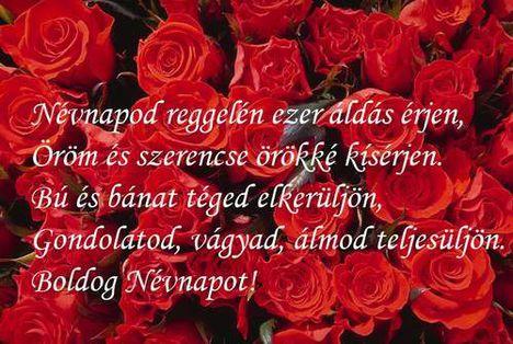 Rádiné Zsuzsikának  Isten gazdag áldását Boldog Névnapot  kivánok ,szeretettel Erzsike